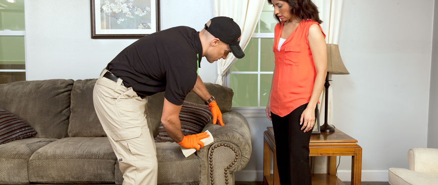 Bloomfield, MI carpet upholstery cleaning